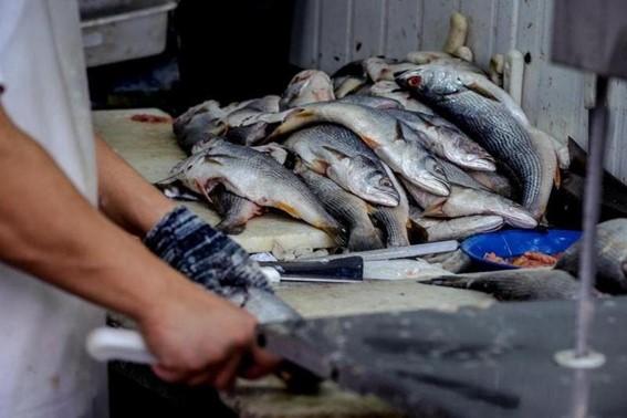 Caso está sendo investigado pelas autoridades de saúde na China (Foto: Alvarélio Kurossu / Agencia RBS)